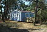 Camping avec WIFI Grosbreuil - Camping La Ventouse-3
