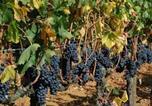 Location vacances Ladispoli - Agriturismo Borgo dell'Aschetto-3