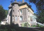 Hôtel Salers - Chateau de la Fromental-1