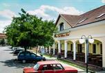 Hôtel Szolnok - Aqua Lux Wellness Hotel-3