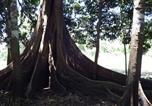 Location vacances Pucallpa - Jene Shobo Ecolodge Amazónico-1