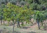 Location vacances Sinalunga - Affittacamere La Fornace-4