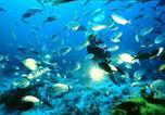 Location vacances Munxar - Bellevue Gozo-3