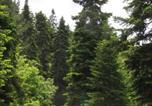 Location vacances Μετσοβο - Xenonas Perivolaki-2