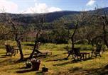 Location vacances Gaiole in Chianti - Castellare de' Noveschi-1