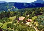 Location vacances Ohlsbach - Ritterhof-2