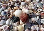 Location vacances St Pete Beach - Caprice #501 Condo-4