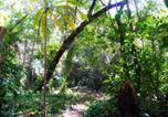 Camping  Acceptant les animaux Costa Rica - Bar'coquebrado camping-3