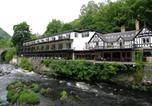 Hôtel Ruthin - Chainbridge Hotel-3