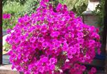 Location vacances Thannenkirch - Au Bon Accueil La Rose-4