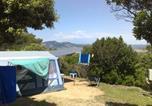 Camping avec Accès direct plage Le Lavandou - Camping La Presqu'Ile De Giens-1