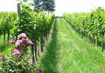 Location vacances Riegersburg - Weingut Dietl-3