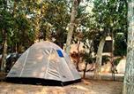 Camping Σπετσες - Astros Camping-3