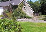 Location vacances Newcastle Emlyn - Bluebell Cottage-1