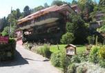 Hôtel Saint-Amarin - Hotel Restaurant au Floridor-1