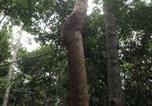 Location vacances Kuranda - Honeybee House-3
