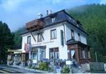 Hôtel Saint-Moritz - Hotel-Restaurant Cresta-Run-3
