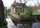Hôtel Le Vieux-Cérier - Chateau de Chambes-3