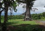 Location vacances Apia - Lupe Sina Treesort-3
