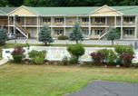 Hôtel Ludlow - Ludlow Colonial Motel-2