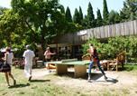 Camping 4 étoiles Vaison-la-Romaine - Camping du Pont d'Avignon-2