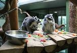 Location vacances Bristol - The Lodge at Bristol Zoo Gardens-4