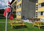 Hôtel Lardal - Bø Summer Motel Gullbring-3