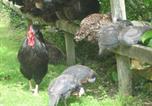 Hôtel Dulverton - Streamcombe Farm-4