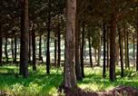 Location vacances Safed - Wooden Forest Cabin-1