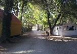 Camping Vieille ville d'Avignon - Camping Belle Rive-1