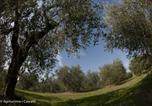 Location vacances Abbadia San Salvatore - Agriturismo i cascetti-3