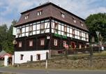 Hôtel Krasná Lipa - Hotel Ron-1