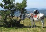Location vacances Saint-Dier-d'Auvergne - Gite Les Mathieux-4