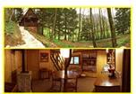 Location vacances Arbois - P'tite maison du moulin de la source-1