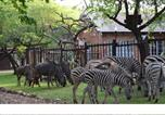 Location vacances Marloth Park - Getaway Bush-2