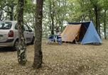 Camping Quillan - Camping Le Roc del Rey-2