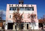 Hôtel Mendoza - Hotel Panamericano Mendoza-1