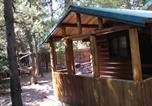 Location vacances West Yellowstone - Wagon wheel cabin-4