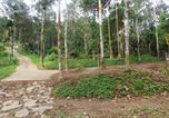 Villages vacances Kozhikode - Kanthanpara Resort-3