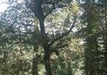Villages vacances Shimla - Nature Nest Eco Resort-3