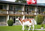 Hôtel Wilderswil - Alpine-Inn by Jungfrau Hotel-1