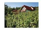 Location vacances Novo Mesto - Holiday home Otocec 25-3