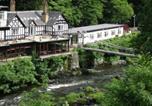 Hôtel Llangollen Rural - Chainbridge Hotel-4