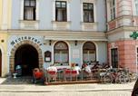 Hôtel Jindřichův Hradec - Hotel Vajgar