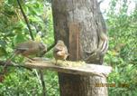 Location vacances Sigirîya - Riverside Lal Homestay-4