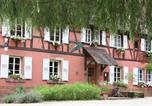 Hôtel Reichshoffen - Hôtel Restaurant Anthon-4