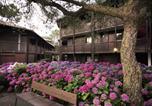 Hôtel Vieux-Boucau-les-Bains - Belambra Hotels & Resorts Soustons Plage Pinsolle-4