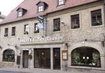 Hôtel Nebra-sur-Unstrut - Hotel Zur Traube-1