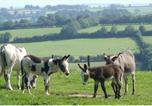 Hôtel Newcastle Emlyn - Happy Donkey Hill-1
