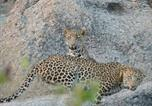 Location vacances GHANERAO VILLAGE - The Haveli Leopard Camp Sandero-3
